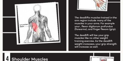 The Benefits of Deadlift [Infographic]