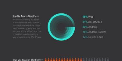 WordPress in 2013