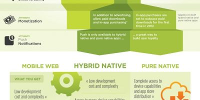 Choose Your Mobile Development Path {Infographic}