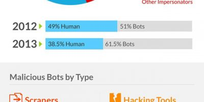 Web Bot Traffic Report 2013 Infographic