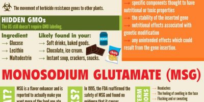 Food Labeling & What You Should Know Infographic