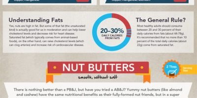The Ultimate Guide To Nuts {Infographic}