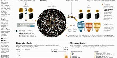 Bitcoin Economy Infographic
