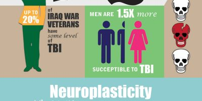 All About Brain Neuroplasticity {Infographic}