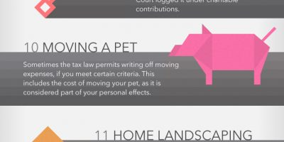 20 Wacky Tax Deductions Infographic