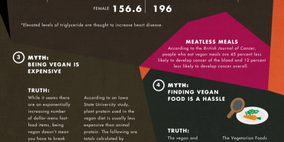 Veganism Myths Debunked {Infographic}