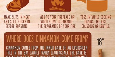 How to Use Cinnamon Sticks {Infographic}