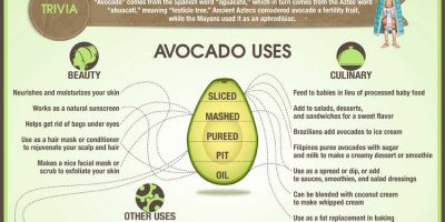 Health Benefits of Avocados {Infographic}