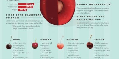 Health Benefits of Sweet Cherries {Infographic}