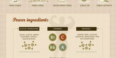 Health Benefits of Garlic {Infographic}