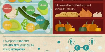 Keep Produce Fresh Longer {Infographic}