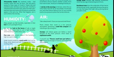 How to Forecast Weather Without Gadgets [Infographic]