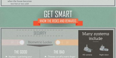 Smart Home Risks & Benefits {Infographic}