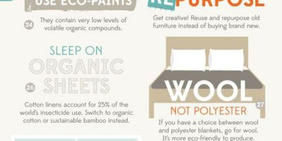 Building a Green Home {Infographic}