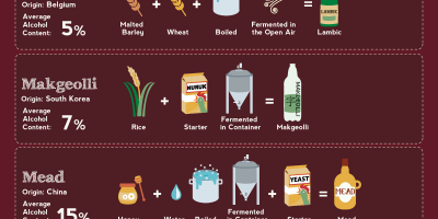Compendium of Alcohol Ingredients and Processes {Infographic}