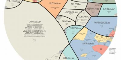 A World Of Languages {Infographic}