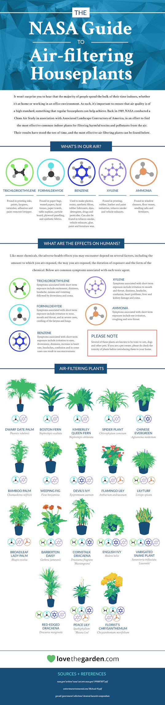 air-filtering-plants