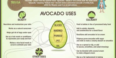 What Avocados Are Good For {Infographic}