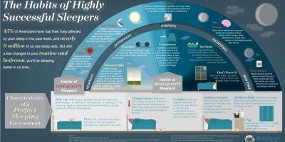 Habits of Successful Sleep {Infographic}