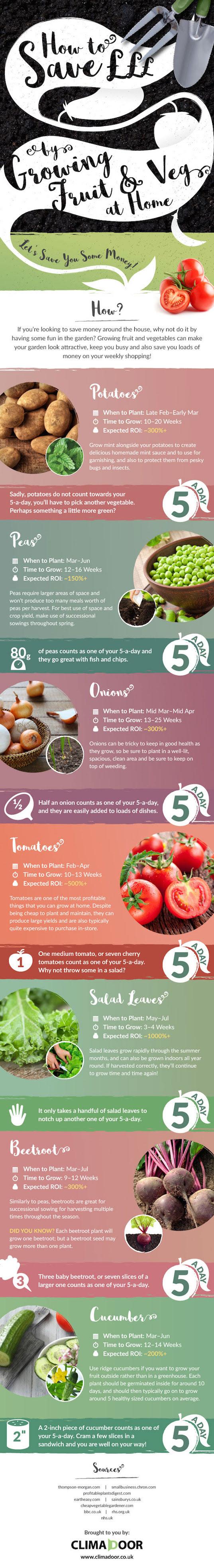 grow-your-food