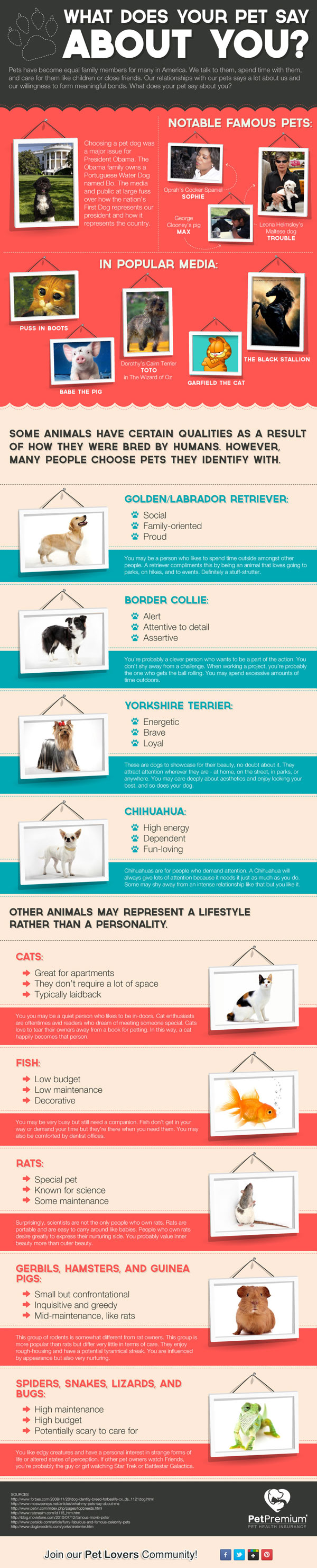 what-your-pet-says-about-you