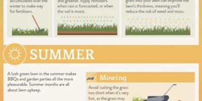 Lawn Maintenance Seasonal Cheat Sheet