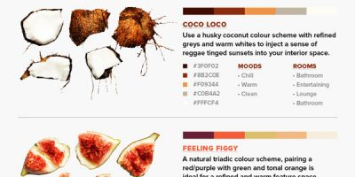 8 Color Schemes from Nature {Infographic}
