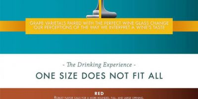 How to Pair Your Wine & Glass {Infographic}