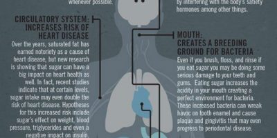 How Sugar Affects Your Body {Infographic}