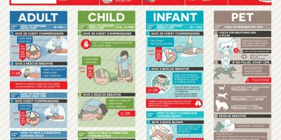 The Ultimate CPR Guide {Infographic}