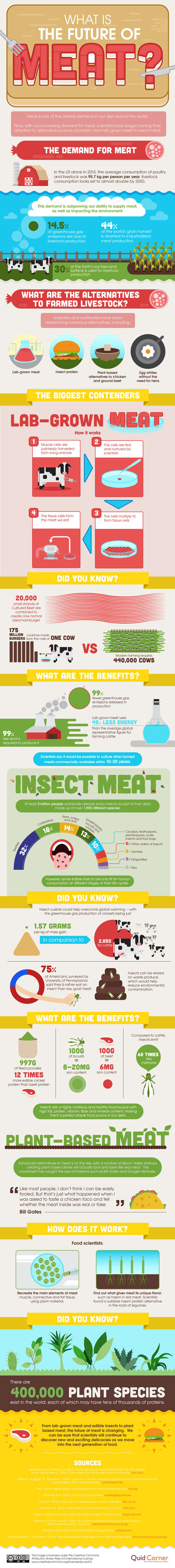The-Future-of-Meat