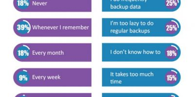 The Importance Of Data Backup {Infographic}