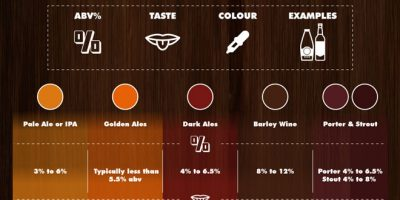 Beer Lover's Guide to Ale & Lager [Infographic]