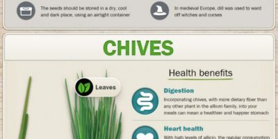 The Health Benefits of Herbs [Infographic]