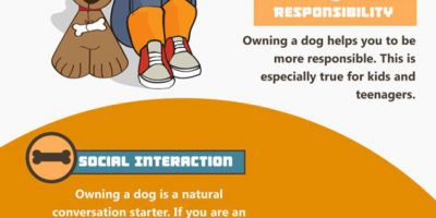12 Ways Dogs Help With Depression and Anxiety [Infographic]