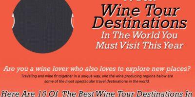 10 Best Wine Tour Destinations [Animated]