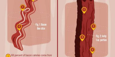 Bacon vs. Jerky [Infographic]