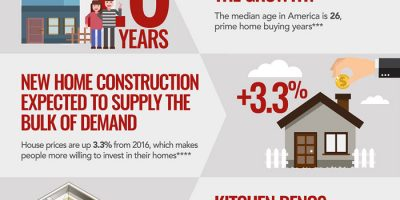 The State of the Kitchen Cabinet Industry [Infographic]