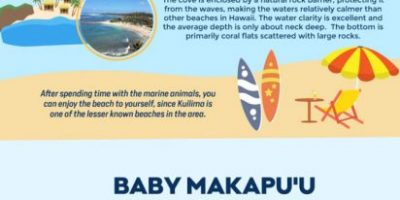 Infographic: Snorkeling in Oahu