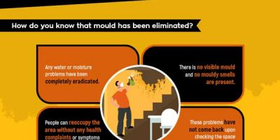 What To Do with Mold In Your Home [Infographic]