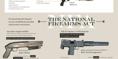 The Truth About the 2nd Amendment [Infographic]