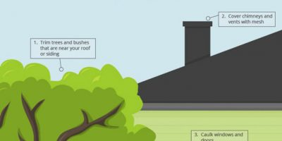DIY Home Pest Prevention Tips [Infographic]
