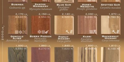 75 Types of Wood Ranked by Hardness