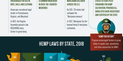 The Business of Hemp [Infographic]