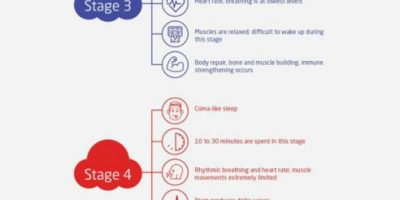 What Are Stages of Sleep and Sleep Cycles [Infographic]