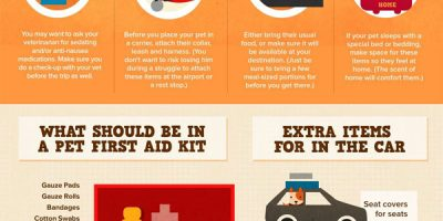 Pet Travel 101 [Infographic]