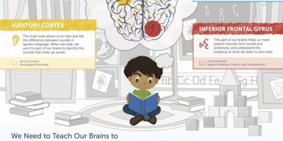 How Our Brains Learn to Read [Infographic]