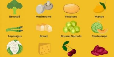What Can Dogs Eat? [Infographic]