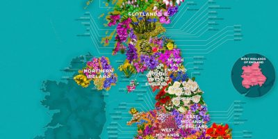 A Flower Map of the UK [infographic]