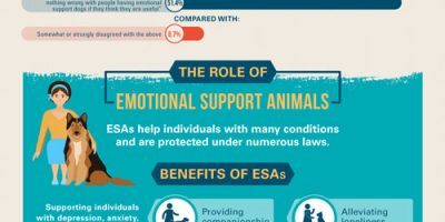 All About Emotional Support Animals Infographic